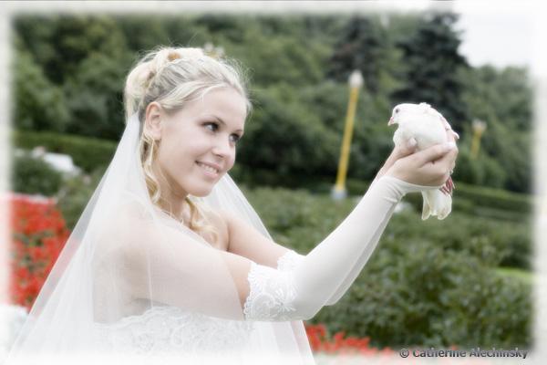 голуби на свадебное